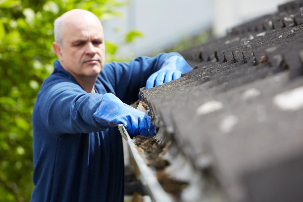 Professional gutter company cleaning gutters